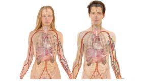 Implant files : un nouveau scandale sanitaire